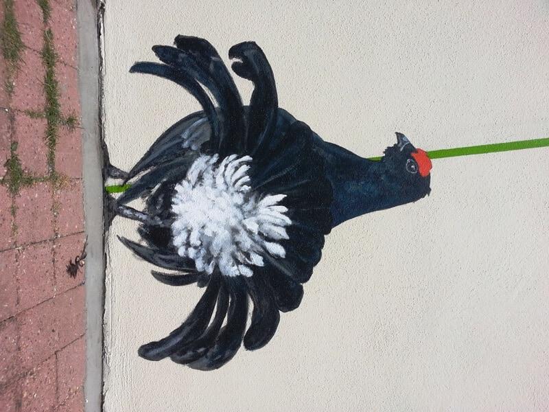 penpaints-detail gevelschildering Vogelbuurt- Korhoen verliest een veertje-Apd2013
